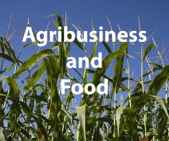 African farmers and the agribusiness sector could create a trillion-dollar food market by 2030 if they could access more capital and electricity, better technology and irrigated land,
